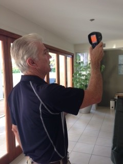 Pest Inspection tips