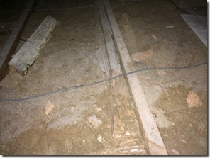 Termite damage on roof timbers 1